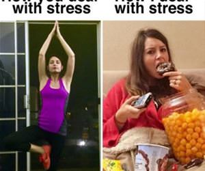 how i deal with stress funny picture