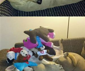 how many toys can i stack funny picture