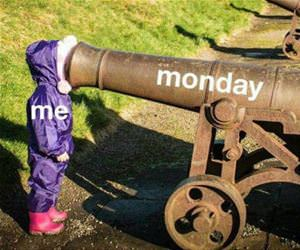 how mondays feel funny picture