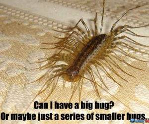 Series of Hugs funny picture