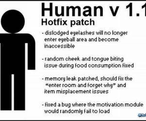 Human Hotfix funny picture