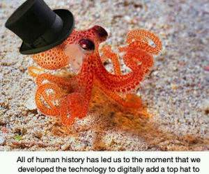 human history funny picture