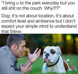 i bring you to the park