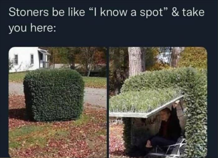 i know a spot