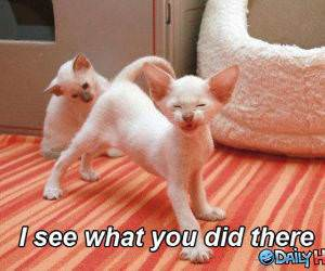 I See What You Did There funny picture