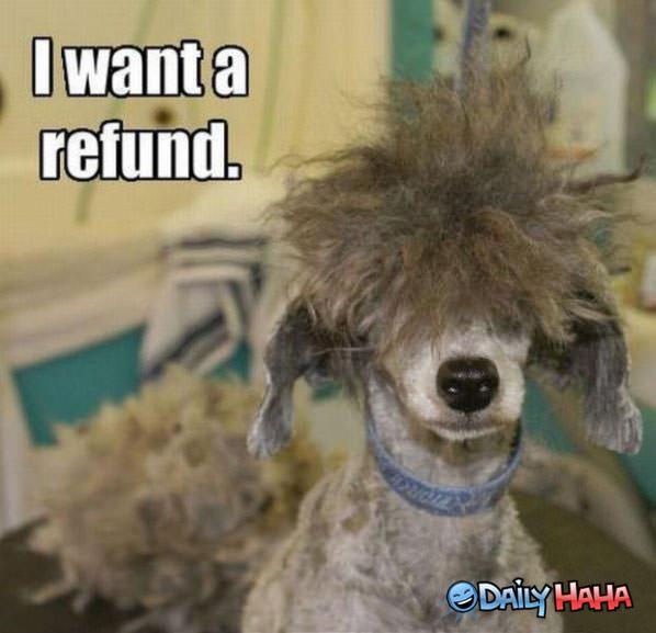 i-want-a-refund.jpg