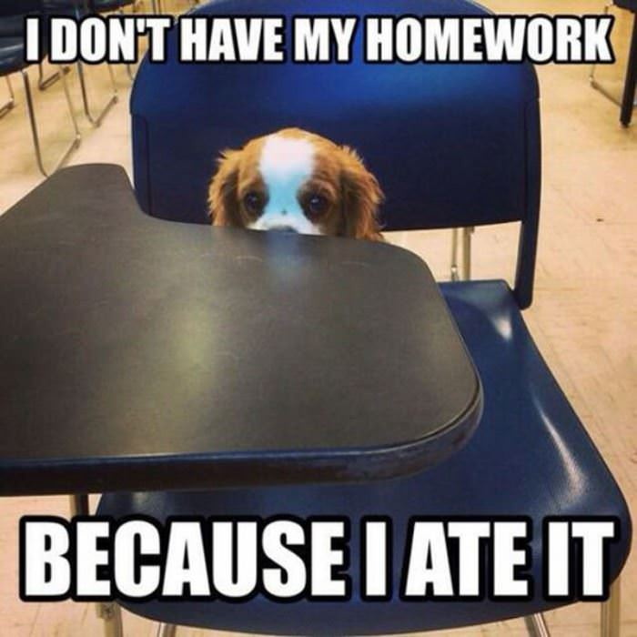 Schools that dont have homework