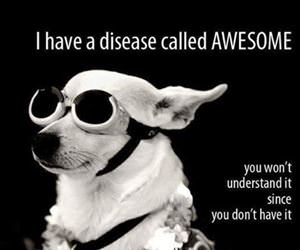 i have an awesome disease funny picture
