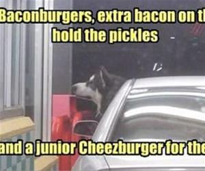 i need some burgers funny picture