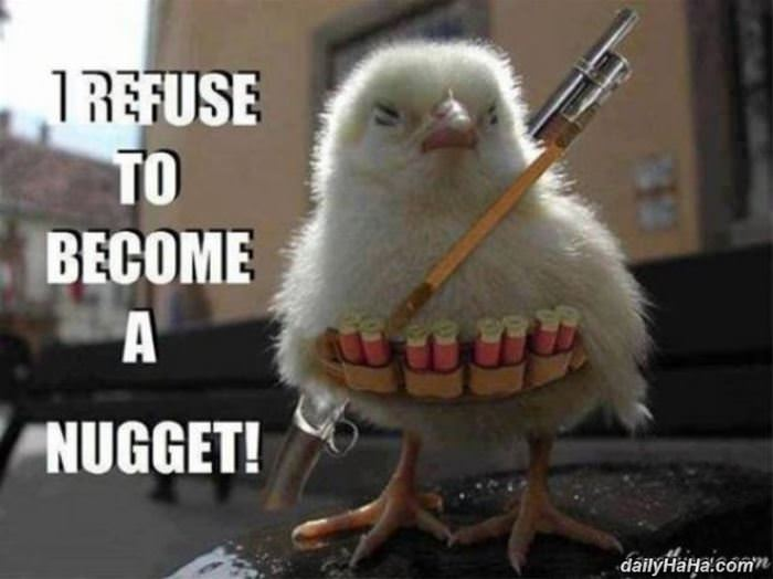 i refuse to be a nugget funny picture