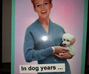 In Dog Years funny picture