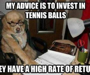 Invest in Tennis Balls funny picture