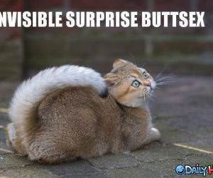 Invisible Surprise Buttsecks