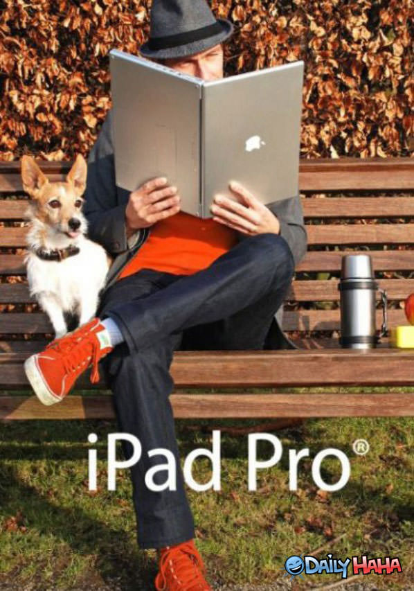 Funny Pictures Ipad-pro