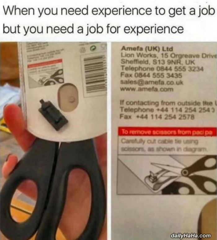 job experience funny picture