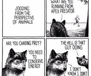 jogging from an animals perspective funny picture