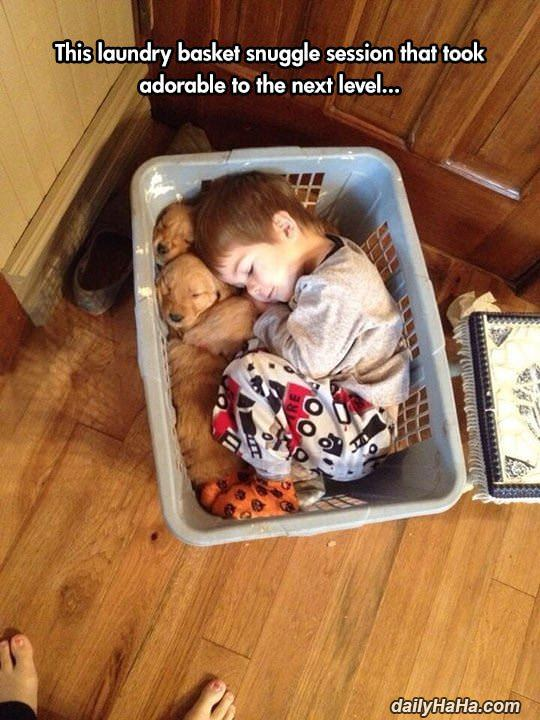 laundry basket snuggle session funny picture
