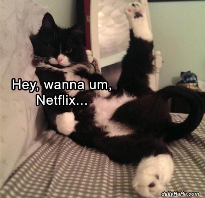lets netflix funny picture