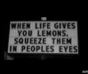 life gives you lemons funny picture