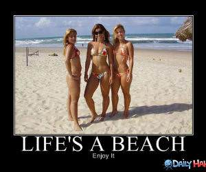 Lifes A Beach funny picture