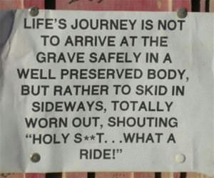 lifes journey funny picture