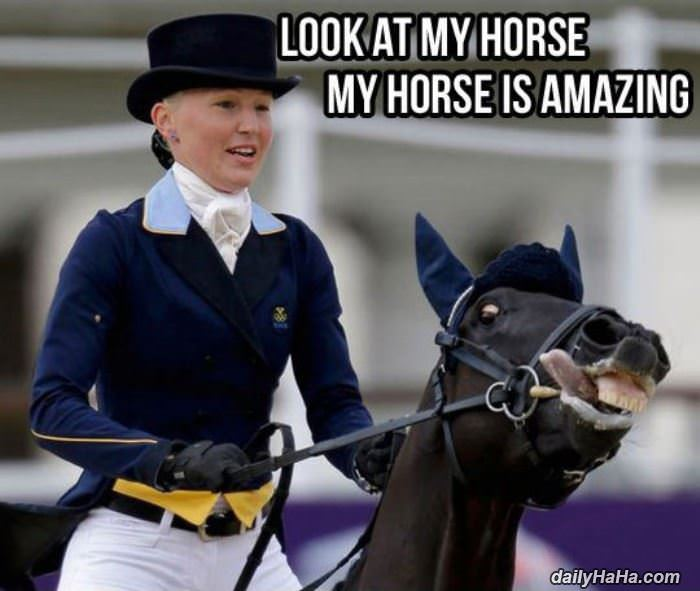 look at my horse funny picture