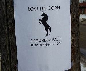 Lost Unicorn funny picture