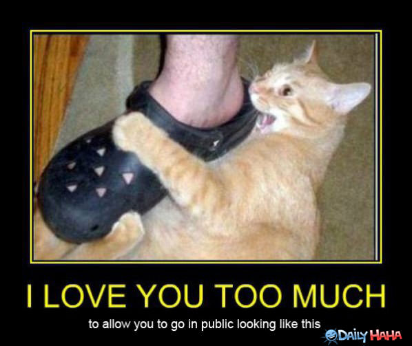So Much Love funny picture