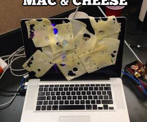 Mac And Cheese funny picture