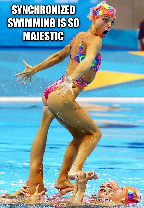Majestic Sport funny picture