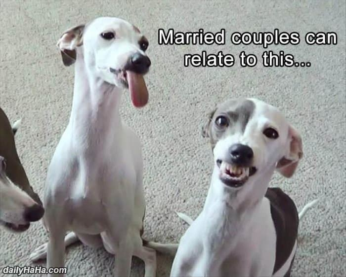 married couples can relate funny picture