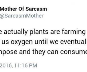 maybe plants are farming us funny picture
