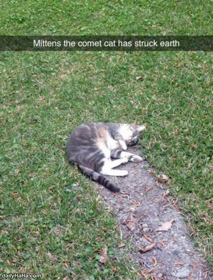 mittens the comet funny picture