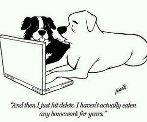 Modern Dogs funny picture
