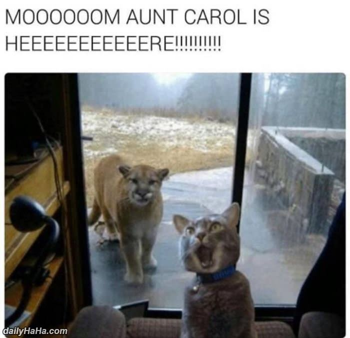 mom aunt carol is here funny picture