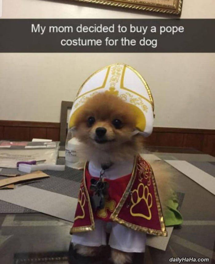mom_got_a_pope_costume_for_the_dog.jpg
