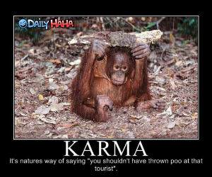 Monkeys Karma funny picture