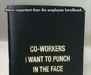 more important than the employee handbook