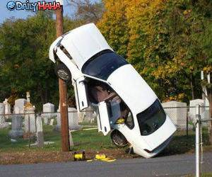 Funny Parking Picture