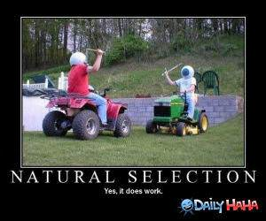 Natural Selection funny picture
