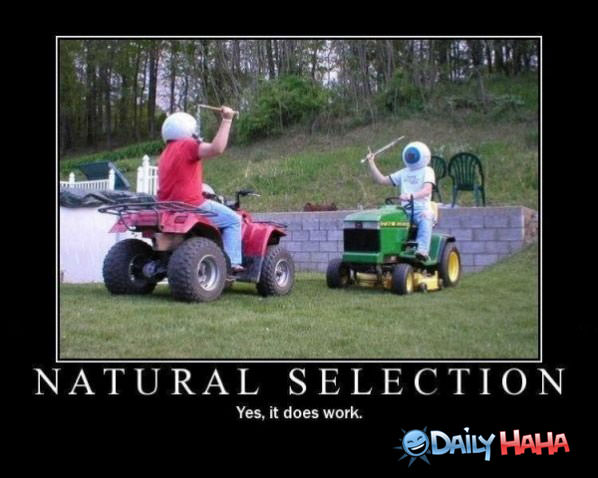 Funny Pictures Natural-selection-works