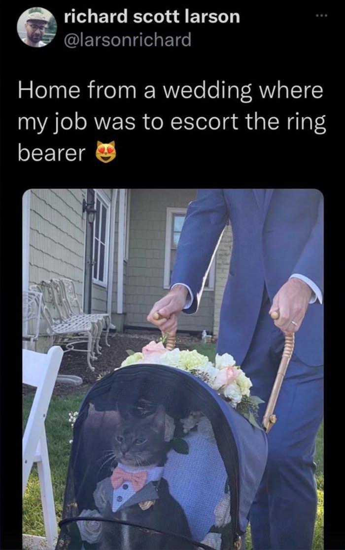 needed an escort