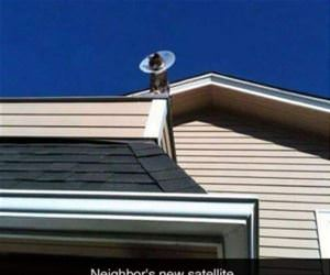 neighbors new satellite funny picture