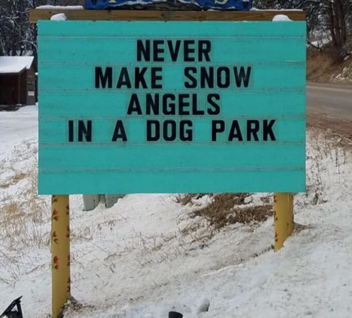 never make snow angels in a dog park ... 2