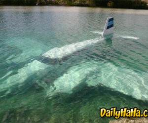 This pilot should lose his license