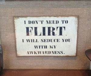 no need to flirt funny picture