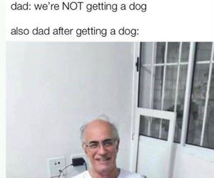not getting a dog