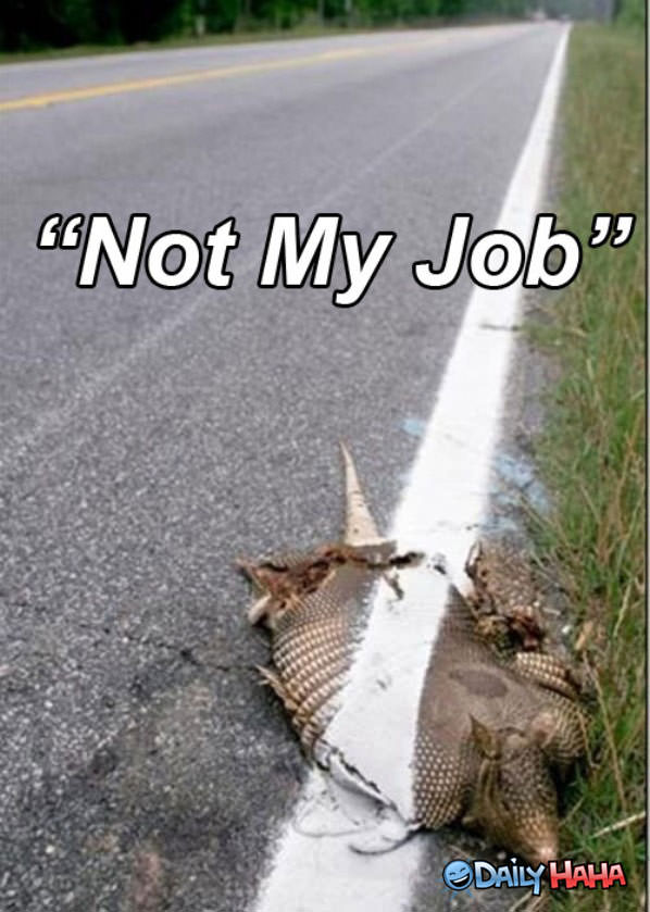 Not My Job funny picture