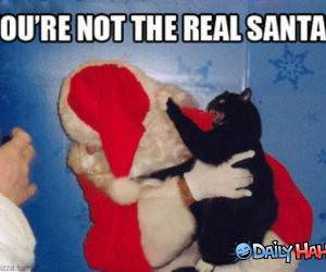 Real Santa funny picture