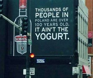 not the yogurt funny picture
